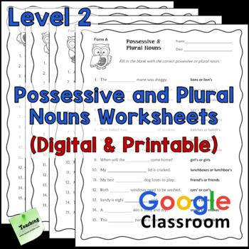 Possessive and Plural Nouns Printables