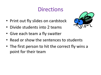 Possessive and Plural Nouns: fly swat activity