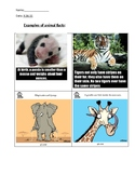 Post Bronx Zoo Trip Activity