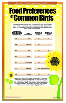 Poster - Bird Seed Ingredient Use