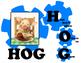 Poster - Kagan - Log? Hog? Cog?