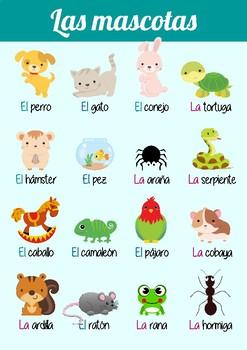Poster - Las mascotas (pets)