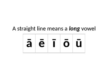 Poster: Short and Long Vowels (Diacritical Marks)