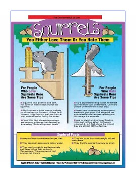 POSTER  Squirrels Love them or Hate them