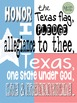 Poster - Texas Pledge Classroom Poster {Messare Clips and Design}