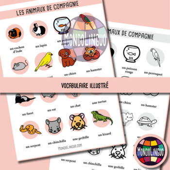 Poster to teach French/FFL/FSL: Animaux de compagnie/Pets