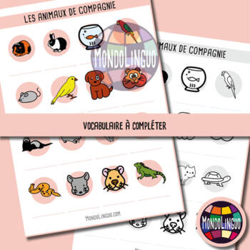 Posters to teach French/FFL/FSL: Animaux de compagnie/Pets