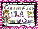 Posters  3rd Grade Common Core Essential Questions