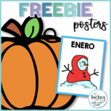 Pósters de los meses del año - Months of the Year Posters in Spanish