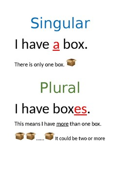 Posters showing Singular to Plural rules