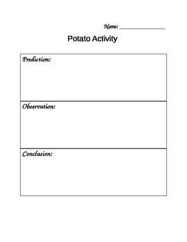 Potato Activity
