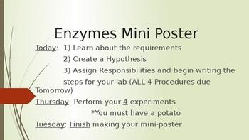 Potato Enzyme Lab and Mini Poster