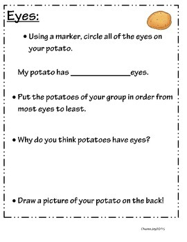 Potato Project- St. Patrick's Day