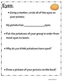Potato Project- St. Patrick's Day