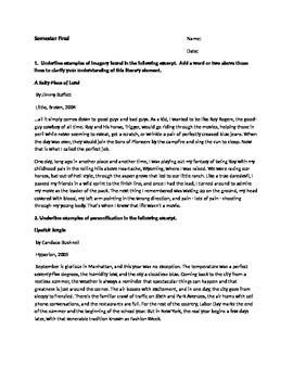 Potential Literary Technique Semester Test/Exam