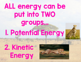 Potential and Kinetic Energy Flipchart