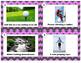 Potential or Kinetic Energy Task Card Sort; Practice, Revi