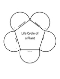 Potted Plant Life Cycle Project