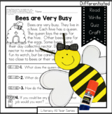 Busy Bees - Literacy and Craft