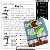 Seeds Sprouts Flowers- Literacy and Craft