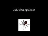 Power Point All About Spiders
