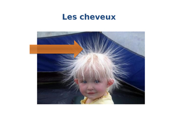 Power Point of French Hair, Age and Eye color