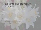Power Point on En tanto que de rosa for AP Spanish Literature