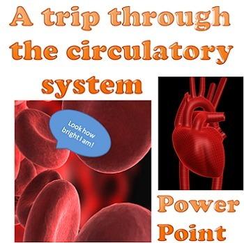 Power point: A trip through the circulatory system