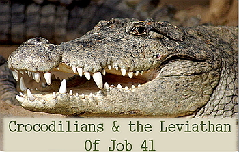 Power point: Crocodilians and Job 41's Leviathan