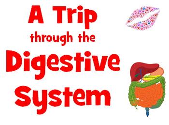 Power point: Digestive system AKA Big Mack Diary