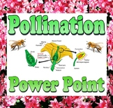 Power point: Pollination