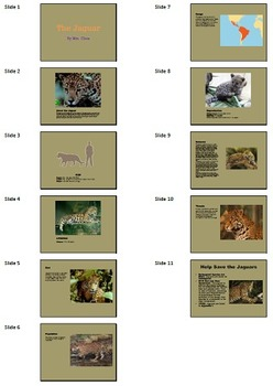 PowerPoint A: Endangered Animals Technology Lesson Plan & Materials