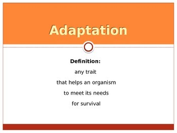 PowerPoint: Adaptations