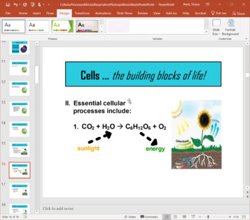 PowerPoint - Cellular Processes (Mitosis, Respiration, Photosynthesis, Waste)