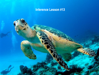 PowerPoint Inference Sea Turtle