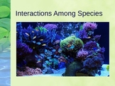 PowerPoint:  Interactions Among Species in the Environment