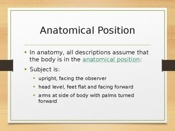 PowerPoint Intro to Anatomy and Terminology