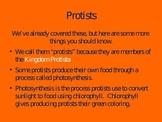 PowerPoint: Microorganisms