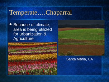 PowerPoint:  Temperate Biomes