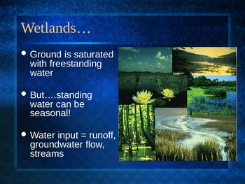 PowerPoint:  Wetlands Biomes & Species Diversity