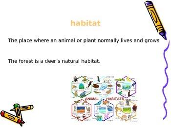 PowerPoints for Engage NY Grade 1 ELA Domain 8 Animals and Habitats
