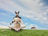Powerful Meditation Techniques