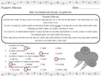 Powerful Weather - Reading Passage - Practice Worksheet