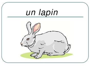 FRENCH - PPT - Flashcards ANIMALS