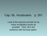 Powerpoint: Vocabulary, Realidades 2 5b