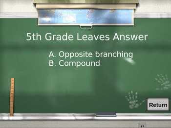 Woodland PowerPoint Game: Are You Smarter Than a Fifth Grader