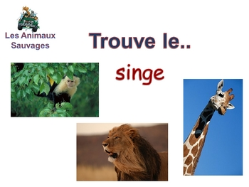 Powerpoint on Wild Animales in French (Vocab and Activities)