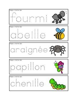 Pré-écriture des insectes