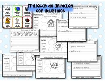 Practica de adjetivos en español  #2
