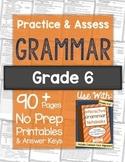 Grammar Worksheets and Tests: 6th Grade NO PREP Printables